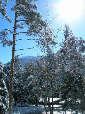 Cortina a 15 kilometri villette a borca di cadore for Affitti trapani arredati