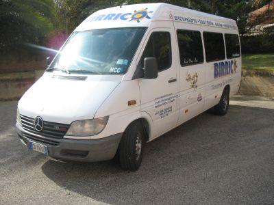 Vendo minibus mercedes sprinter 316 cdi for Box cavalli usati vendo