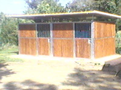 Vendo box e scuderie per cavalli for Box cavalli usati vendo