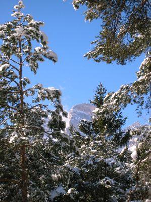 Cortina a 15 kilometri villette a borca di cadore for Affitti asti arredati